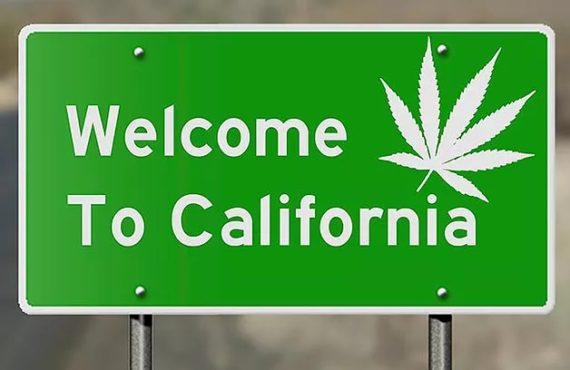 California + Weed = 4 things you should know.
